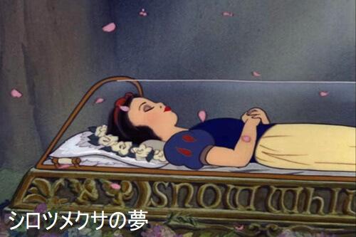 棺に横たわる白雪姫